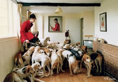 January 2008: Otis Ferry and his hounds. Photograph by Tim Walker; styled by Sarajane Hoare.