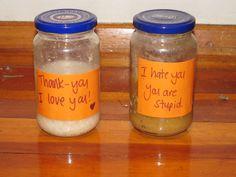 masaru emoto rice experiment - Google Search