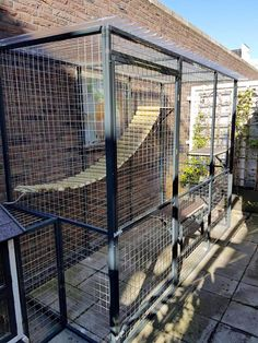 Cat Run, Cat Walk, Backyard Dog Area, Cat Kennel, Outdoor Cat Enclosure, Cat Cages, Cat Playground, Outdoor Cats, Cat Furniture