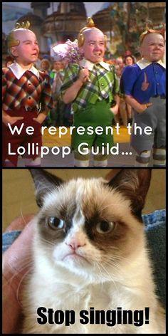Grumpy Cat stars in the wizard of oz
