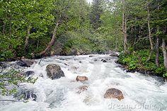 Wild river by Kaan Kurdoglu, via Dreamstime