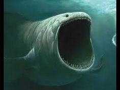 #28 Zjawiska Paranormalne - Potwory z Morskich Głębin [Film Dokumentalny]