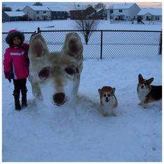 Bowser & Peach and their snow corgi!!