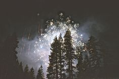 New free stock photo of forest new year's eve fireworks Bonfire Night, Nail Art, Portraits, Wishes For You, Set You Free, New Years Eve, Night Skies, Free Stock Photos, Free Photos
