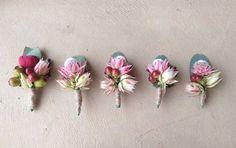 #buttonholes #groom #dreamblooms Groom Buttonholes, Succulents, Wedding Inspiration, Stud Earrings, Inspired, Jewelry, Jewellery Making, Earrings, Jewels