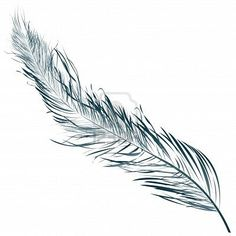 Love this :) Feathers look so simple to draw or paint but they're really not. To get it right is very hard. This is beautiful :)