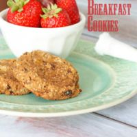 #paleo Breakfast Cookies: ½ pound ripe bananas (about 1 cup mashed); ½ cup unsweetened applesauce; 2 tablespoons palm shortening; 2 oz pitted dates (about 3 or 4); 1/3 cup coconut flour; 2 tsp cinnamon; 1 tsp vanilla; 1 tsp baking soda; 1½ tsp lemon juice; ½ cup finely shredded dried coconut; 2 tablespoons dried apricots, chopped; 2 tablespoons dried currants; 2 tablespoons raisins