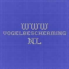 www.vogelbescherming.nl