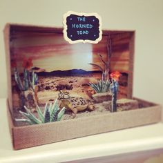Shoebox Desert Diorama made for 3rd grade project | Biomes