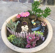 Fairy garden in a pot.