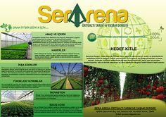 Serarena Mail Broşür çalışması by Haldun çağlıner, via Behance