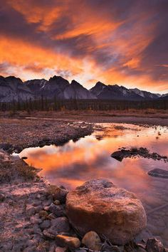 Nord-Saskatchewan-Fluss, Kootenay Plains