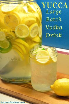 Yucca Drink is the combination of the result of shaking jar fulls of lemons, sugar, ice, and vodka for a sweet, sweet nectar for a large batch vodka drink. Cheap Alcoholic Drinks, Party Drinks Alcohol, Cocktail Drinks, Summer Drinks, Alcoholic Punch, Alcoholic Shots, Fun Drinks, Cocktail Recipes, Lemon Vodka Drinks