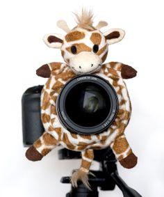 Giraffe Large Shutter Hugger