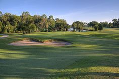 Palm Harbor Golf received a complete 18 hole renovation in 2009, including redesigning bunkers and updating hazards. Each hole with its unique character and challenges will offer a different experience every time you play.