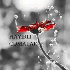 Hayırlı Cumalar Islamic Quotes, Allah, Diy And Crafts, Christmas Ornaments, Holiday Decor, Photography, Argo, Flower, Twitter