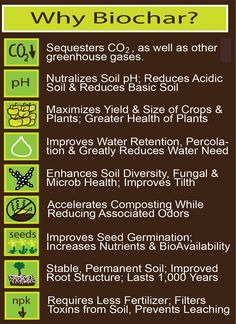 Use of Biochar where soil is depleted.  Most of these are made possible just by composting.