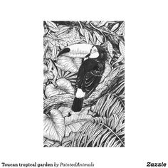 Toucan tropical garden canvas print #zazzle #print #toucan #tropical #ink #drawing #katerinakart