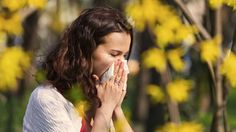Feeling out of sorts at the moment? Learn why the transition to spring may be causing you issues! #Ayurveda
