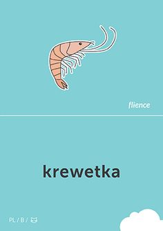 Krewetka #CardFly #flience #animal #polish #education #flashcard #language