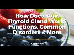 How Does Your Thyroid Gland Work? Functions, Common Disorders & More – Juice Recipes Thyroid Test, Thyroid Gland, Thyroid Health, Hobbies For Adults, Hobbies For Men, Work Function, Hypothyroidism, Disorders, Natural Remedies