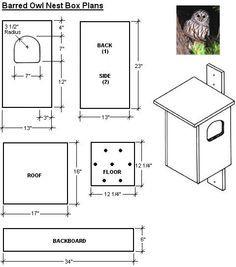 Free Easy Bird House Plan | Screech Owl & Bird House – Garden Supplies | Gardening Tools