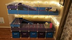 My new Guinea Pig Cage setup! 2- 2X5s with kitchens and 1X2 patios. Cavy Love <3 C C Cage. C&C Cage.