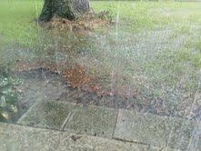 Tropical rain today where we live - News - Bubblews
