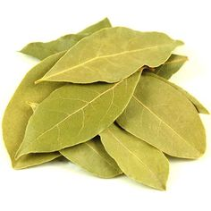 Bay Leaf Health Benefits to Treat Gout and Lower Cholesterol Burning Bay Leaves, Savory Spice Shop, Money Jars, Gm Diet, Laurel Leaves, Lower Cholesterol, Drying Herbs, Shangri La, Seashell Crafts