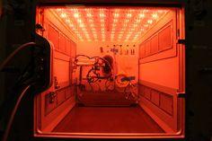 Nov. 23, 2016 Prototype of Space Station's Advanced Plant Habitat
