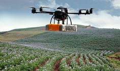 Drones set to give global farming a makeover... From Sri Lanka to Uganda, UAVs with near-infrared sensors are monitoring plants for pests and disease, with implications for agricultural policy worldwide. Using near-infrared, you can identify stress in a plant 10 days before it becomes visible to the eye.