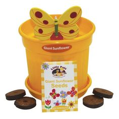 Little Pals Growing Pot of Fun Childrens planting gardening set Tomato Sunflower Gifts For Girls, Girl Gifts, Giant Sunflower Seeds, Dinosaur Puzzles, Water Tray, Butterfly Plants, Plant Science, Plant Markers, Garden Soil