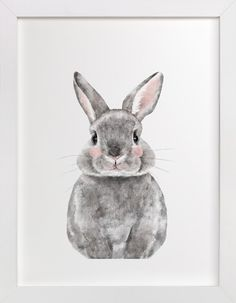 Baby Animal Rabbit by Cass Loh at minted.com