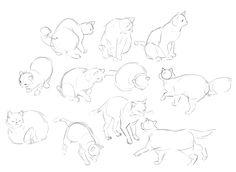 iranian/filipino/chinese artist in LAstoryboards: OK K.O., TMNT comic: miss bird + miss cat buy:...
