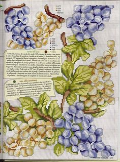 Gallery.ru / Фото #171 - EnciclopEdia Italiana Frutas e verduras - natalytretyak