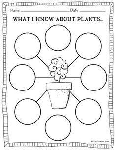 Què en sé de les plantes?