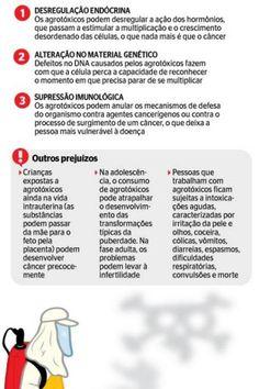 Inca alerta para alto consumo de agrotóxicos, que podem causar câncer e impotência - Saúde e Ciência - Extra Online