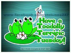 Terrific Tuesday~ on Pinterest | Happy Tuesday, Tuesday ...