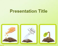 Seed germination process PowerPoint Template