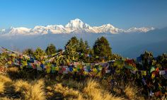 Sunrise from Poon Hill (Dreamstime)
