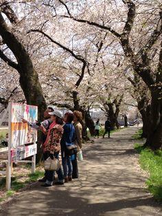 Fukui Japan