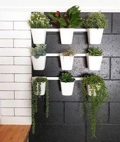 Ikea planter wall, vertical garden, industrial decor Ikea Planters, Planter Pots, Small Space Gardening, Small Gardens, Small Space Living, Small Spaces, Industrial, Canning, Wall