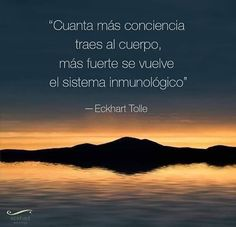 Eckhart Tolle, Motivational Phrases, Deep Thoughts, Me Quotes, Coaching, Wisdom, Yoga, Words, Life