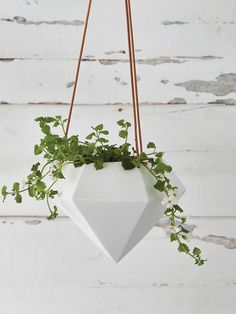 Designed in Sweden, our beautiful new geometric hanging planter is this season's must-have.