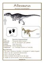 Natuurkaart Dinosauriërs – Allosaurus Chill, Kindergarten, Projects, Galette, Montessori, Leo, Teacher, Maps, Extinct Animals