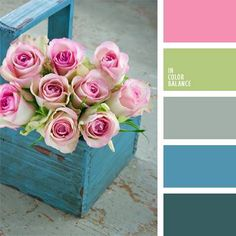 blue box & pink Roses; color palette