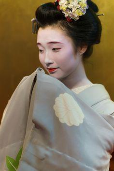 maiko 舞妓 Gion Kobu 祇園甲部 Mameroku 豆六 KYOTO JAPAN
