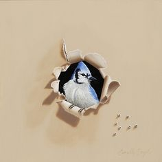"""""""Blue Bandit"""" 