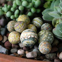 polymer clay beads b