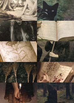 practical magic inspiration...